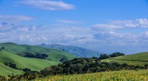 Alameda County nature