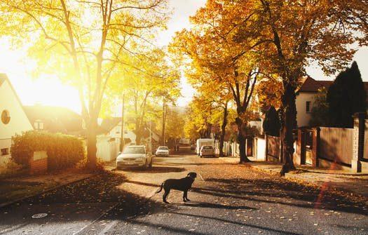 Streets in Modesto
