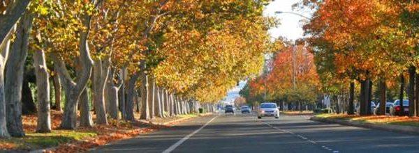 Tracy, CA